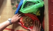 Vụ trộm 200 cây vàng ở Ninh Bình: Vì sao gia đình bị hại vẫn chưa nhận được tài sản?