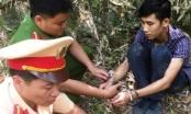 Thanh Hóa: CSGT bắt thanh niên vận chuyển heroin, hồng phiến túy từ Lào về