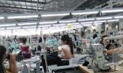 Thanh Hóa: Gần 6.000 công nhân đình công đã đi làm trở lại