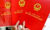 Phó thủ tướng chỉ đạo về việc sổ đỏ ghi tên cả nhà