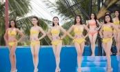 """""""Bikini là phần thi gây được chú ý nhất từ phía giám khảo lẫn khán giả"""""""