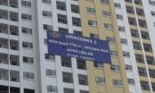 Bản tin Bất động sản Plus: Chủ đầu tư dự án Kim Văn - Kim Lũ nợ hàng trăm tỷ đồng tiền thuế