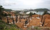 Địa ốc 24h: Tiến hành phương án chống sạt lở 40 móng biệt thự không phép ở Sơn Trà