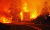 Cháy rừng dữ dội ở Bồ Đào Nha, ít nhất 57 người chết