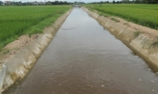 Biến nước thành hàng hóa trong nông nghiệp: Tại sao vẫn chần chừ?