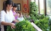 Tiêu chí rau, thịt sạch cho Hà Nội: Tại sao cần một mẫu số chung?