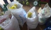 Bình Phước: Xử phạt 93 cơ sở vi phạm an toàn vệ sinh thực phẩm