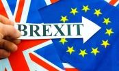 Anh sẽ công bố lập trường chiến lược trong tiến trình Brexit