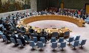 Đề nghị Liên Hợp Quốc họp về tình hình Syria