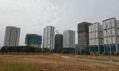 Bản tin Bất động sản Plus: Nhiều uẩn khúc xung quanh GPMB dự án Khu ngoại giao đoàn