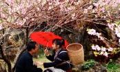 Hà Giang: Nếu còn yêu nhau tìm về chợ tình Khâu Vai