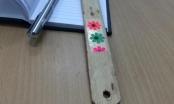 Hà Tĩnh: Cảnh cáo cô giáo mầm non đánh vào tay trẻ