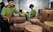 Vụ tạm giữ 1.174 khúc gỗ nghiến ở Hà Giang: Chủ hàng không chứng minh được nguồn gốc