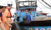 Ứng cứu thành công 6 ngư dân gặp nạn tại khu vực biển Khánh Hòa