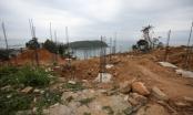 Đà Nẵng: Tiến hành phương án chống sạt lở 40 móng biệt thự không phép ở Sơn Trà