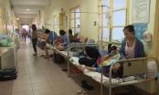 Tin nóng 247 ngày 9/8/2017: Hà Nội, bệnh nhân mắc sốt xuất huyết đang tăng từng ngày
