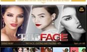 The Face, Sing My Song, Hòa âm ánh sáng góp mặt trong đề cử Ấn tượng VTV 2017