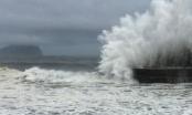 Dự báo thời tiết ngày 14/9: Cập nhật mới nhất về cơn bão số 10