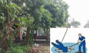 Hải Dương: Tai nạn hi hữu, người phụ nữ tử vong do bị dây điện rơi trúng người