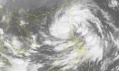 Thông tin mới nhất về cơn bão số 11