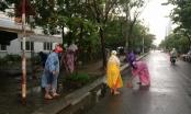 Chủ tịch Đà Nẵng cảm ơn người dân chung tay dọn dẹp sau bão để đón APEC