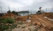 Đà Nẵng cảnh báo đỏ dừng giao dịch bất động sản ở bán đảo Sơn Trà