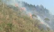 Hà Giang: Cháy rừng do đốt nương, hàng trăm người phải gồng mình dập lửa