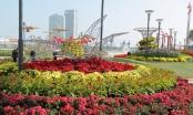 Đường hoa rực rỡ chào đón Tết cổ truyền dân tộc tại Đà Nẵng
