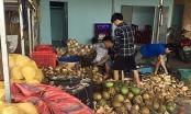 Quảng Nam: Phát hiện cơ sở sử dụng hóa chất tẩy trắng dừa