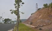 Đã có kết luận thanh tra của đoàn liên ngành về đất đai tại đảo Phú Quốc