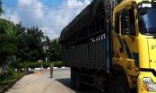 Nữ công nhân ở Bình Dương chết thảm dưới bánh xe tải
