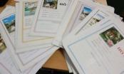 Đắk Lắk: Truy tố nhóm đối tượng lừa đảo chiếm đoạt hàng chục tỷ đồng