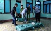 Quảng Bình: Khen thưởng cá nhân, tập thể vụ phát hiện hơn 300kg ma túy