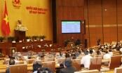 Việt Nam trở thành nước thứ 7 phê chuẩn CPTPP