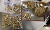 Hai kẻ lấy cắp 230 lượng vàng bất ngờ...giao nộp thêm 200 lượng vàng