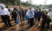 Cho Đất Việt mãi mãi xanh tươi, đời đời bền vững