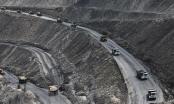 Bắt giữ 9 đối tượng trộm cắp 140 tấn than tại Công ty PT. Vietmindo Energitama