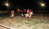 Kị sỹ Phú Yên dành giải quán quân Đua ngựa Gia Lai mở rộng 2017