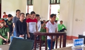 """""""Kỳ án"""" trộm trâu ở Bát Xát, Lào Cai: Các bị cáo được trả tự do tại tòa"""