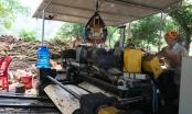Nghệ An: Vì sao hàng loạt xưởng gỗ 3 không vẫn rầm rộ hoạt động?