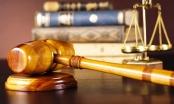TP HCM: TAND quận Gò Vấp vi phạm thời hạn xét xử?