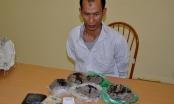 Điện Biên: Bắt đối tượng vận chuyển 4kg thuốc phiện