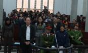 Đang xét xử nguyên Phó Giám đốc Sở Nông nghiệp Hà Nội và đồng phạm