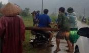 Lâm tặc tấn công kiểm lâm để cướp gỗ lậu ở Khánh Hòa