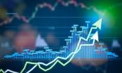 Chỉ số giá cổ phiếu ngành Tài chính tăng trưởng mạnh trong tháng 8