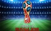 Quán cafe, Nhà Văn hóa không được phát World Cup 2018 nếu không xin phép VTV?