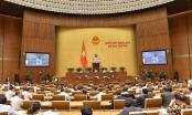 Tuần này Quốc hội nghe báo cáo về phòng chống tham nhũng