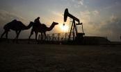 Qatar rời OPEC - Tự thân vận động