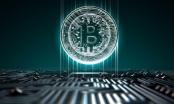Giá Bitcoin hôm nay 11/1: Loay hoay thoát đáy