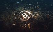 Giá Bitcoin hôm nay 13/1: Bitcoin tăng giá, khép lại một tuần đen tối